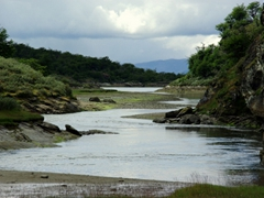 A river runs through it; Tierra del Fuego national park
