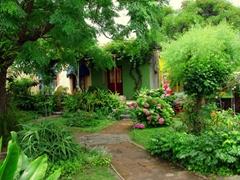 Pretty gardens abound in scenic Colonia
