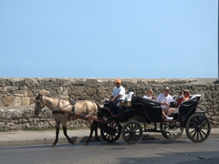 Tourists enjoying a horse & carriage ride through old Cartagena