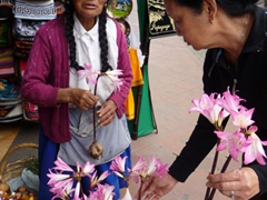 Ann buying pretty flowers from an indigenous lady