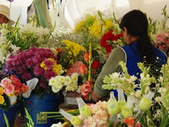 Flowers in Ecuador are pretty and affordable. A dozen roses will set you back $1 or $2