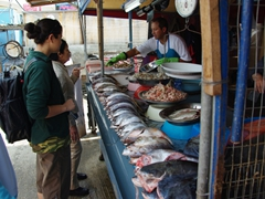 Ann and Becky shop for fish; outdoor market
