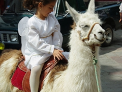 An angel astride a lama
