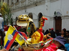 The Pase del Niño Viajero, considered to be the largest and best Christmas pageant in all of Ecuador (here a stuffed chicken parades the streets on horseback)