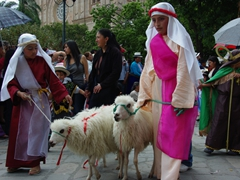 Shepherds leading their sheep at the Pase del Niño Viajero