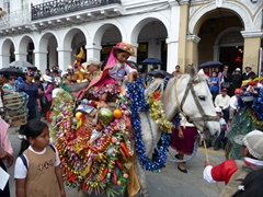 Check out all the offerings on this horse; Pase del Niño Viajero