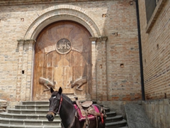 A horse tied to the Gualaceo church awaits his owner