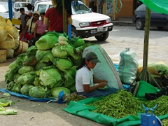 A massive mound of lettuce dwarfs the nearby girl; Gualaceo market
