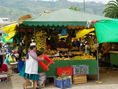 Colorful fruit stall; Gualaceo market