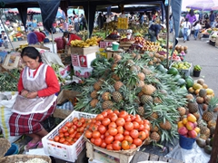 Fresh fruits and vegetables for sale at the Mercado Feria Libre