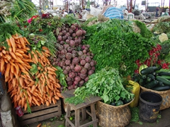 Heaps of delicious fresh vegetables at the Feria Libre market