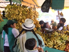 Buying bananas in Gualaceo