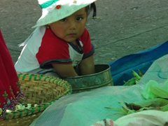 Cute girl at Gualaceo market