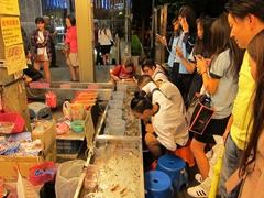 Catching live prawns