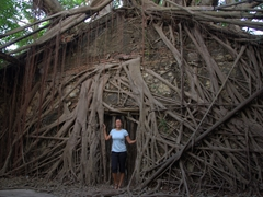 Becky poses in the roots of Anping tree house