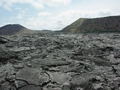 The volcanic flow on Sullivan Island is considered fairly recent, occurring a mere 100 years ago