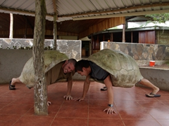Robby and Luke don heavy tortoise shells (weighing about 40 lbs each) and pretend to battle it out