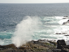 A natural blow hole spouts water every few seconds; Espanola's Suarez Point