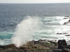 A natural blow hole spouts water every few seconds; Espanola's Suarez Point