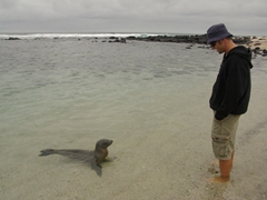 Robby getting checked out by a curious sea lion
