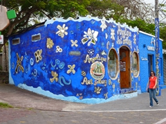 Santa Cruz is the place to stock up on Galapagos souvenirs, with plenty of cute boutique stores