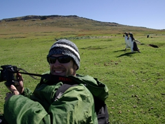 Gentoo penguins run past Robby who takes a breather from his photography; Carcass Island
