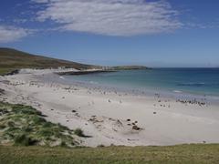 Leopard Beach is a popular landing spot for Carcass Island