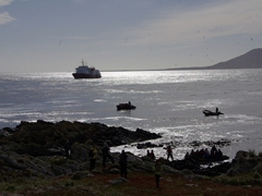 Zodiacs await their turn to offload passengers at the tricky landing site of Steeple Jason