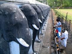 Life sized elephant terrace, Ruwanwelisiya Dagoba; Anuradhapura