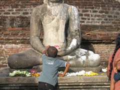 A young boy places a lotus flower before Lord Buddha, Polonnaruwa
