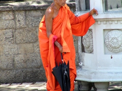 A monk trying to beat the heat at Dambulla cave complex