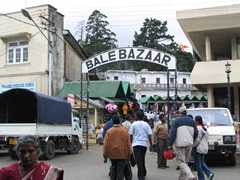 Bale Bazaar, Nuwara Eliya