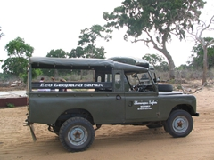 We entered the Yala National Park in this Eco Leopard Safari vehicle