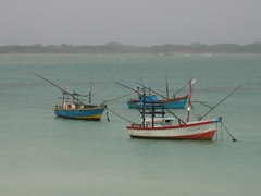 Colorful fishing boats near Galle