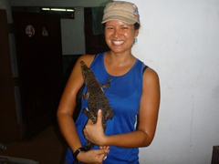 A baby crocodile gets awfully cosy with Becky; Dehiwala Zoo reptile section