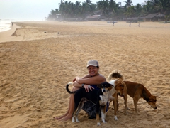 The dogs of Hikkaduwa love tourists and will immediately seek you out on the beach