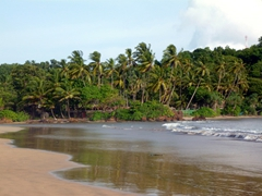 View of a pristine beach, outskirts of Galle