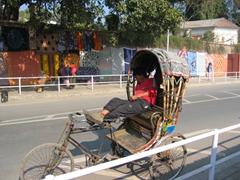 A snoozing rickshaw driver; Kathmandu