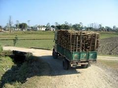 Wooden logs packed tightly on the back of this truck; near Chitwan