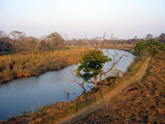 Sunset view from our Chitwan National Park viewing platform