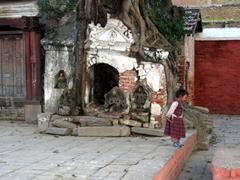 Tree roots have overtaken this Hindu temple; Kathmandu