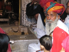 These devout pilgrims are sitting besides hundreds of rats; Karni Mata Temple