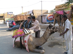 Robby climbs up on his camel; Jaisalmer camel safari