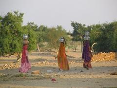Women carrying pots laden with water; Jaisalmer