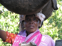 Kutia Kondh tribal woman carrying a heavy load