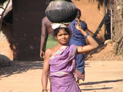 Soura tribal woman carries a heavy load