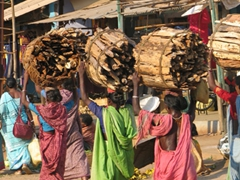 Hard workers; women carrying heavy loads of fire wood