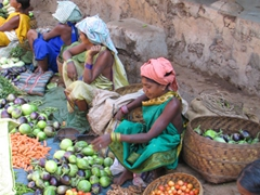 Gadhaba Tribal women set up their vegetables for sale at the weekly Bonda market