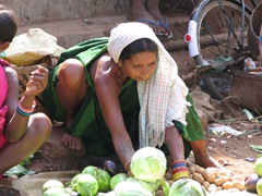 Gadhaba tribal woman with fresh cabbage for sale
