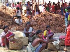 Maria tribal women take a breather at the Mardoom market